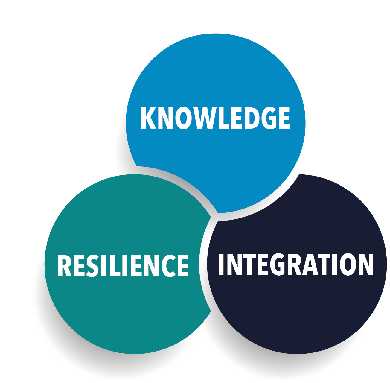 Knowledge Integration Resilience.PNG